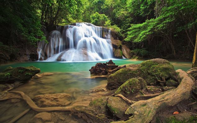 forest-waterfalls-pictures-rainforest-waterfall
